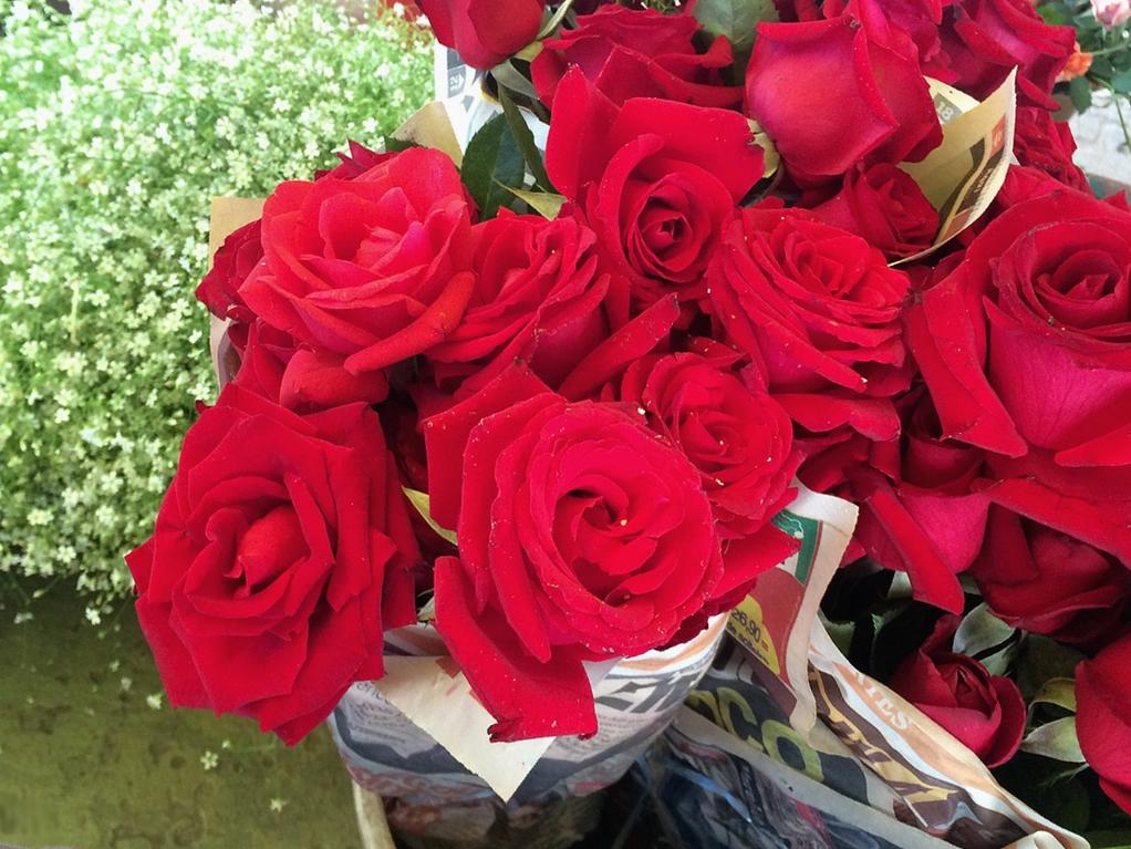feira-das-flores-01