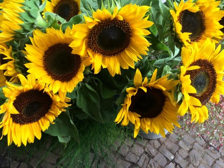 feira-das-flores-02