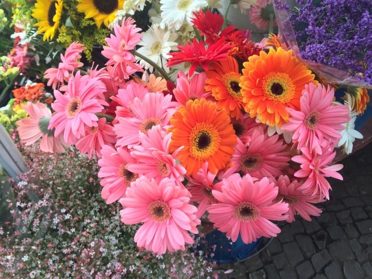 feira-das-flores-03