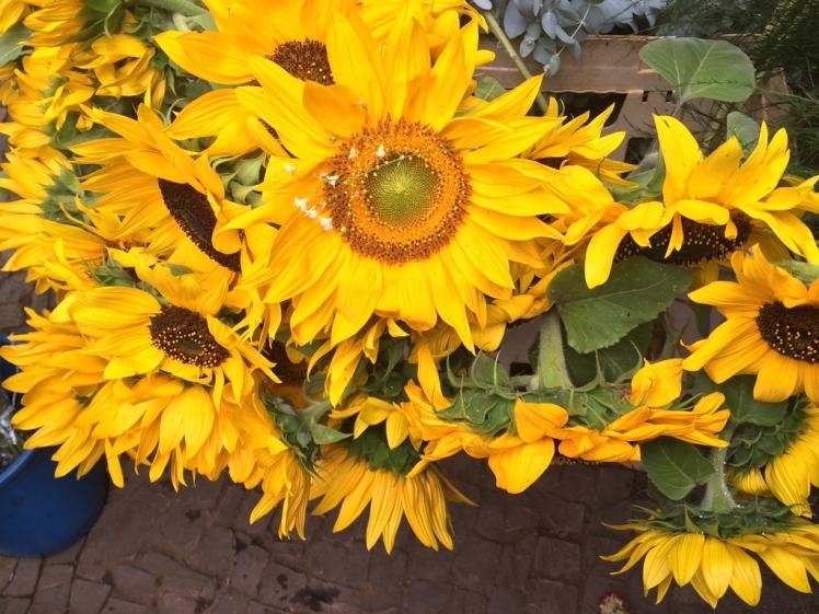 feira-das-flores-04