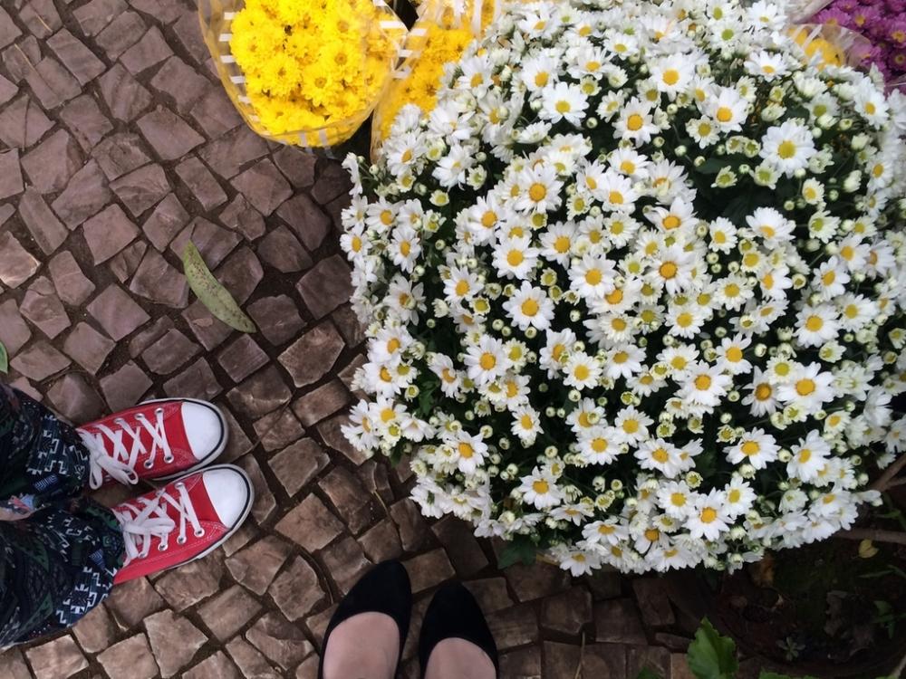 feira-das-flores-09
