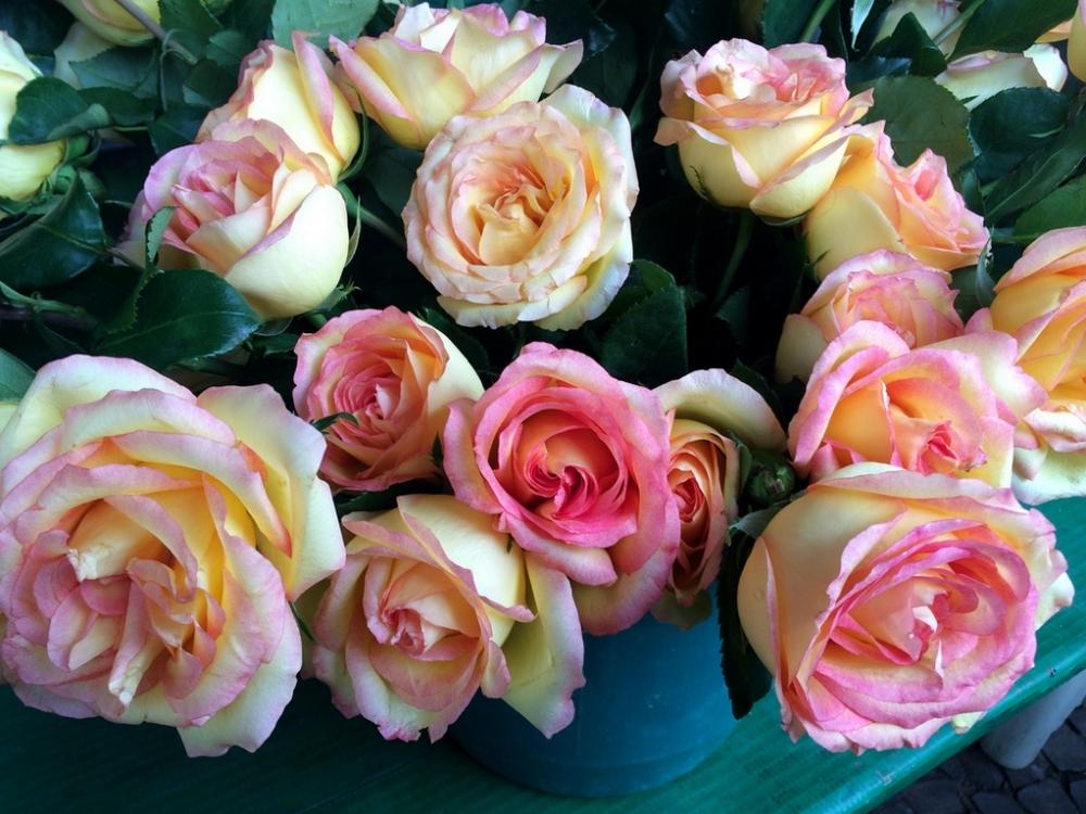 feira-das-flores-11