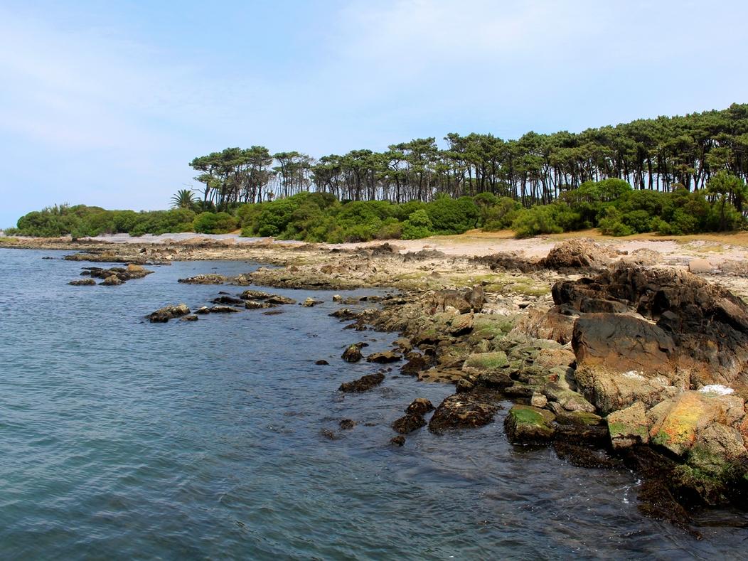 ilha-goritti--passeio-punta-del-este