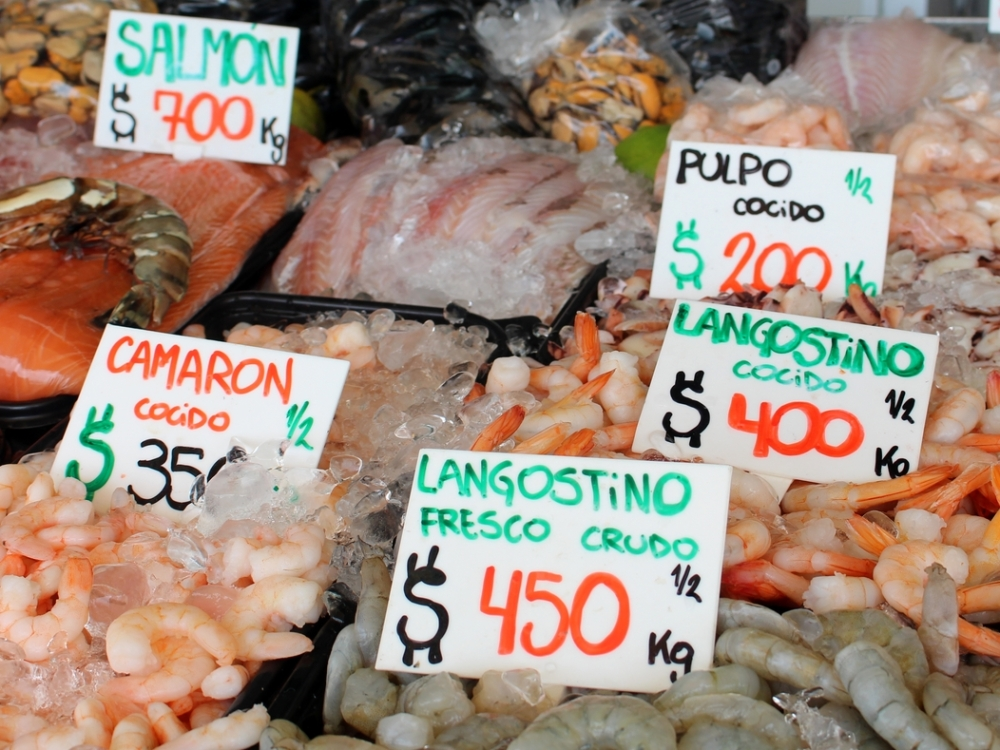 mercado-do-porto-punta-del-este-uruguai