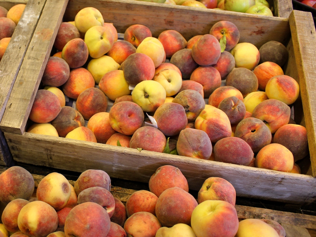 mercado-agricola-montevideo-uruguai-gastronomia
