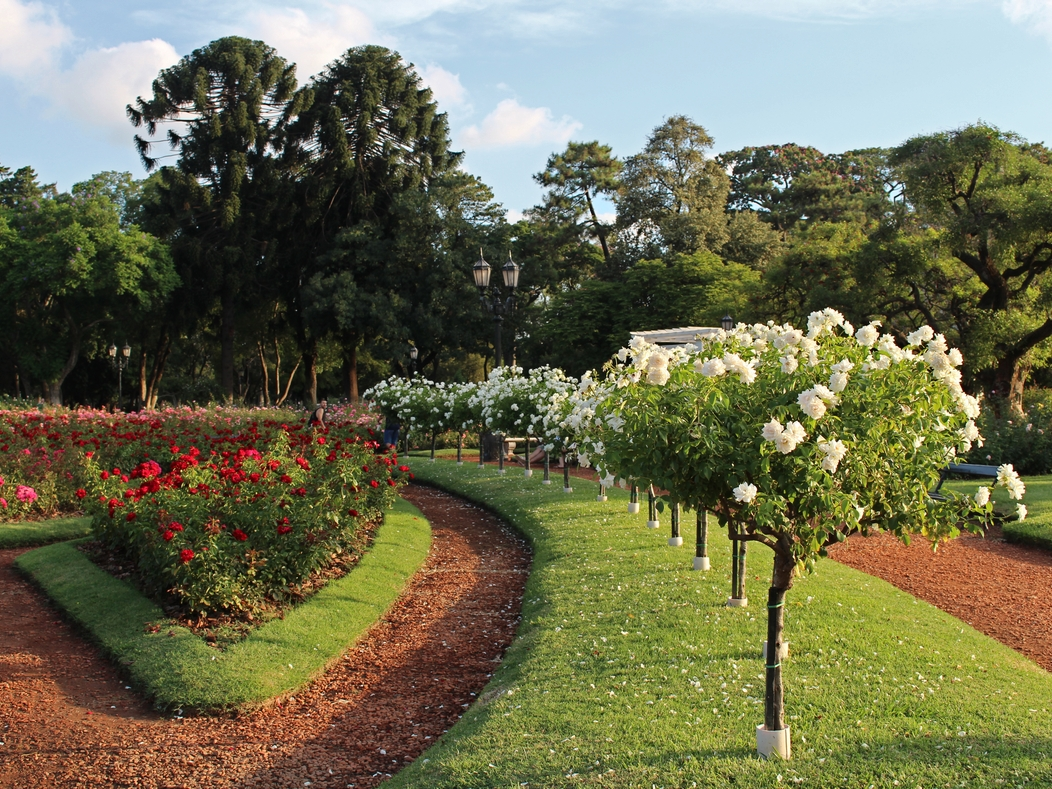 bosques-de-palermo-botanico-rosedal-buenos-aires-argentina