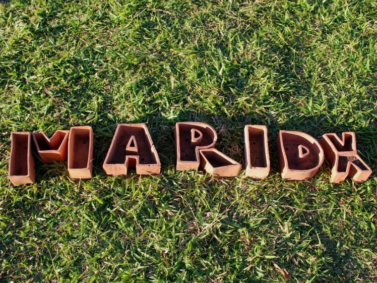 maridx-brumadinho-mg-inhotim