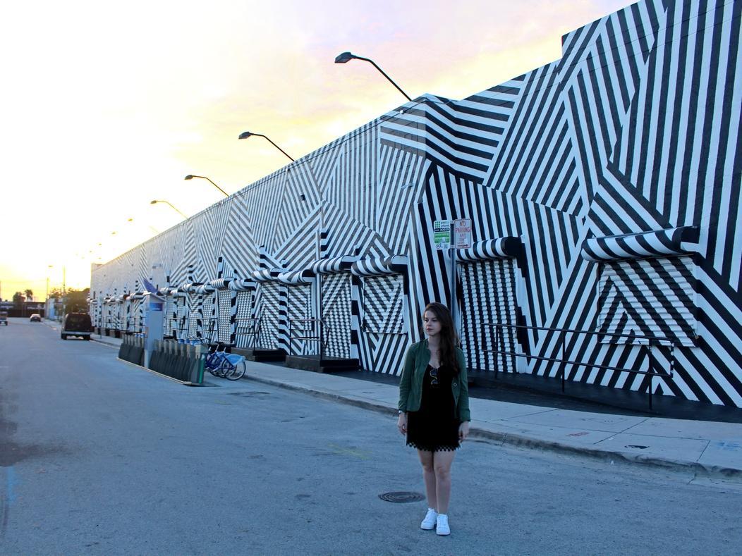 wynwood-walls-miami-09